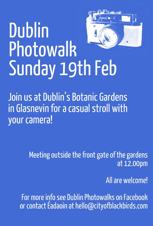 Dublin Photowalk