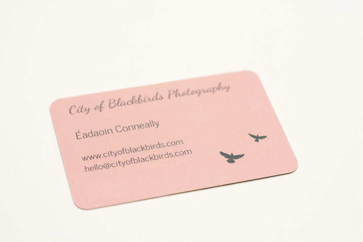 City of Blackbirds Moo Cards