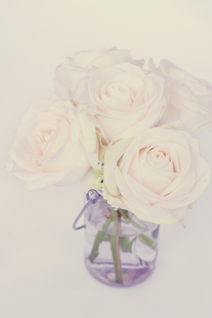 White Roses | City of Blackbirds Photography
