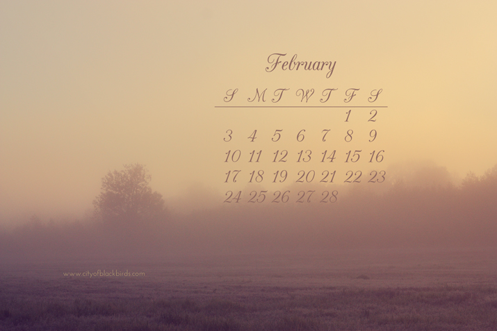 Free February Desktop Calendar | City of Blackbirds Photography