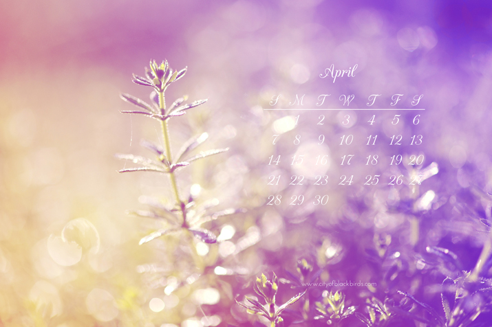 Free April 2013 Desktop Calendar | City of Blackbirds Photography
