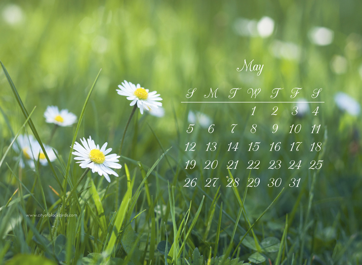 Free May 2013 Desktop Calendar | City of Blackbirds Photography